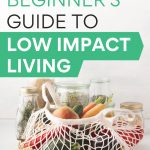 The Beginner's Guide to Low Impact Living - produce in mesh bag