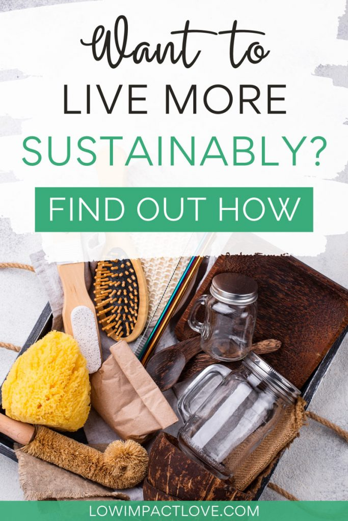 Want to Live More Sustainably? Find Out How - box with sponge, brush, and glass jars