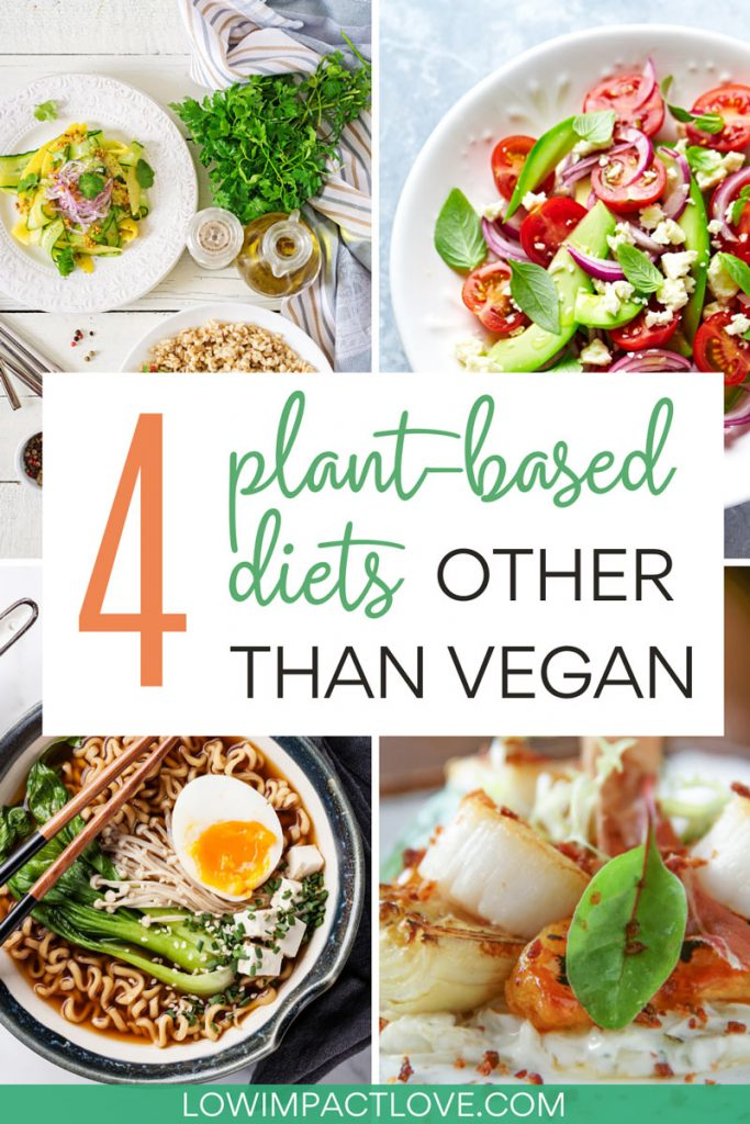 4 Plant Based Diets Other Than Vegan - collage of vegetarian meals