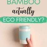 Is bamboo eco friendly? Hand holding blue and white cup on peach background