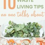 10 Low Waste Living Tips No One Talks About - egg carton with fruit and veg compost inside