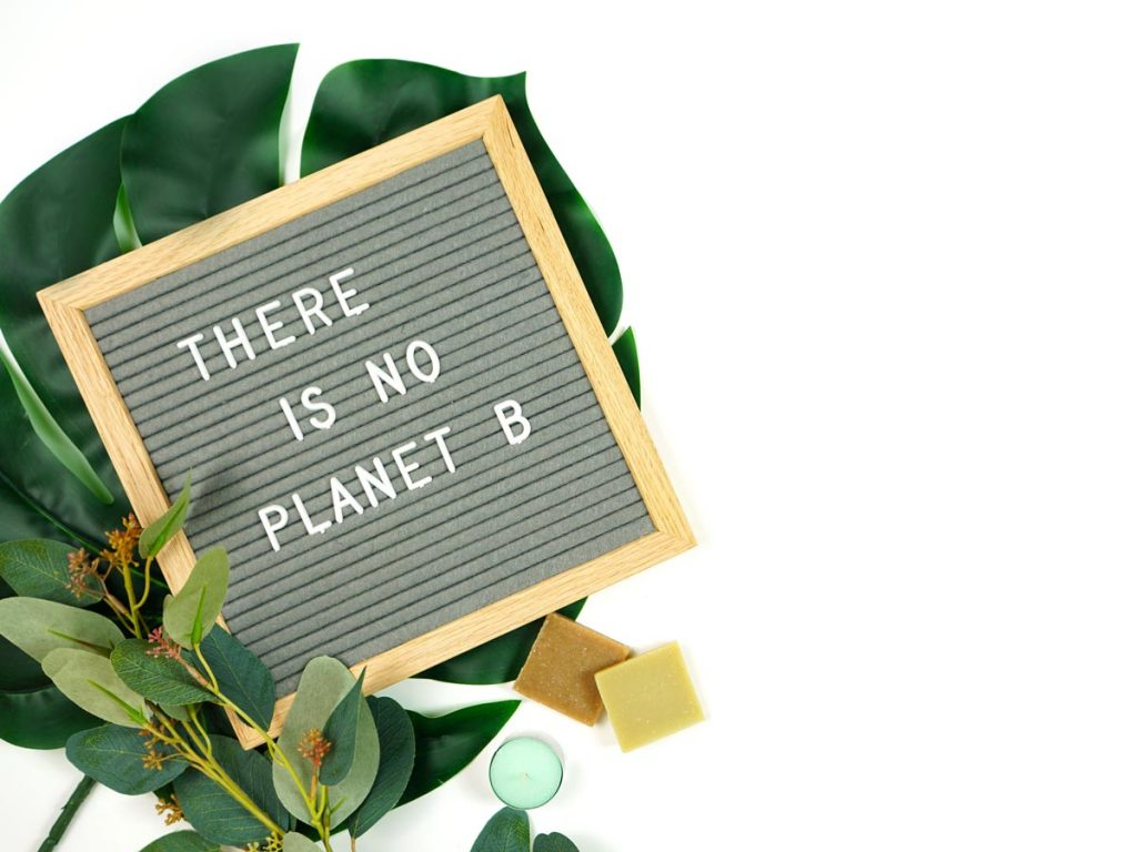 "Large green leaf on white background with letterboard, text: ""There is no planet B""."