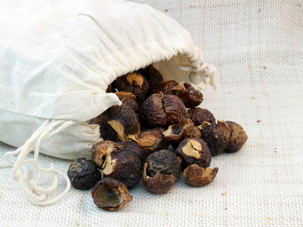 Canvas bag of soap nuts spilling onto blanket