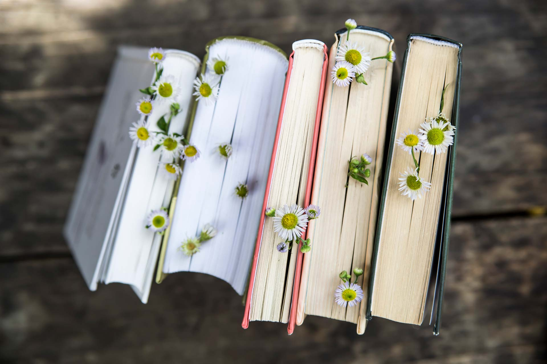 Five books about sustainability standing up with daisy flowers poking out from pages