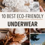 """Collage of cotton branch and women's briefs, with text overlay - """"10 best eco friendly underwear""""."""