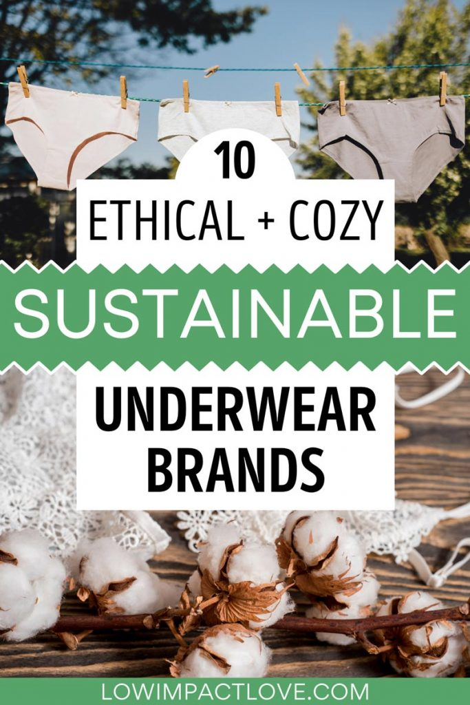 """Collage of cotton branch and three pairs of briefs hanging from line, with text overlay - """"10 ethical + cozy sustainable underwear brands""""."""