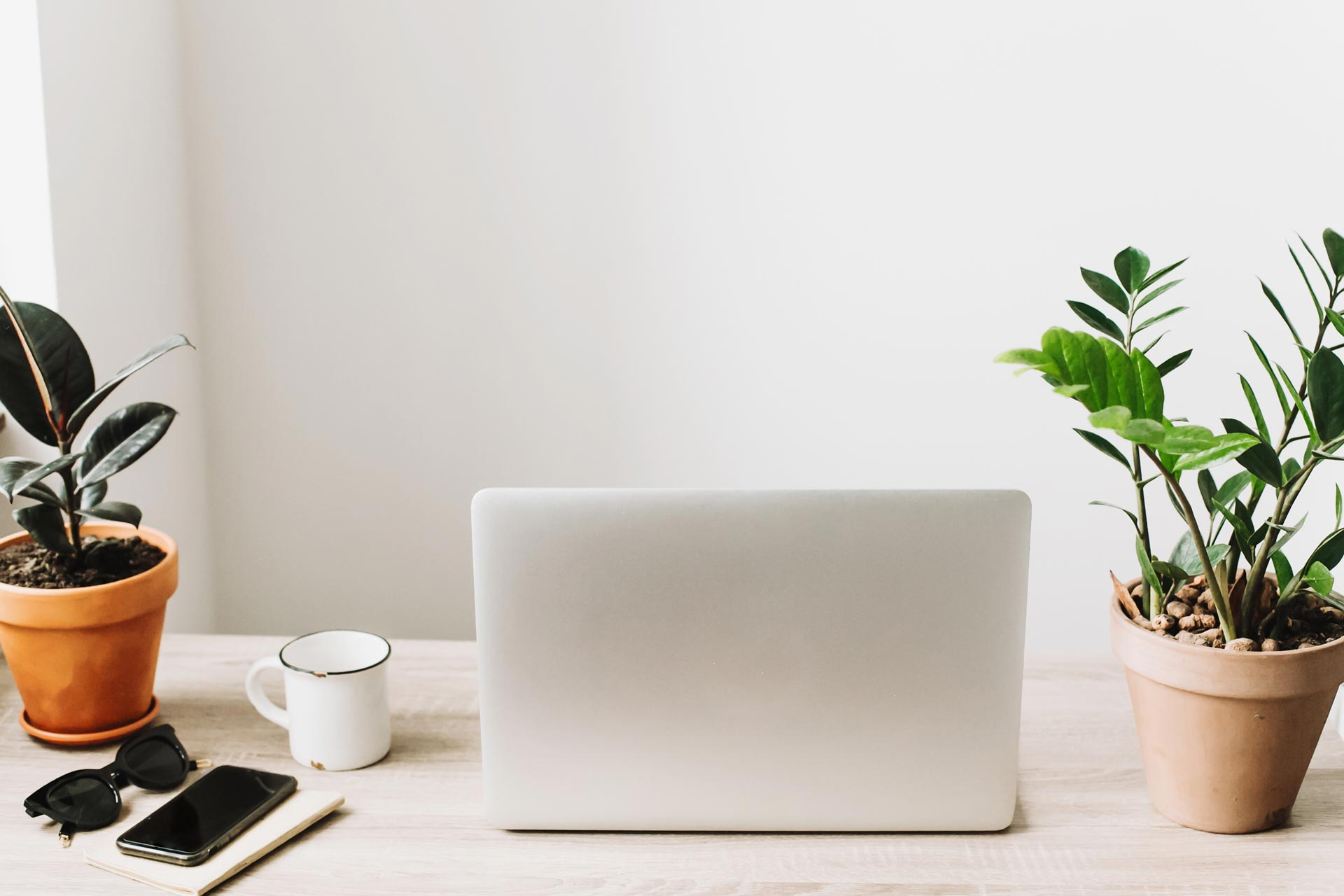 Minimalist lifestyle desk with laptop, potted plants, phone, and coffee mug.